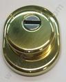 Escudo protector de cilindro Segurclau Antitubo dorado
